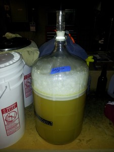 6 gallon beer fermentation